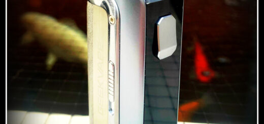 Geekvape M100 Aegis Mini 2
